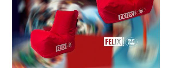 Siuvinėjimas ant sėdmaišio FELIX
